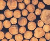 Australian Timber